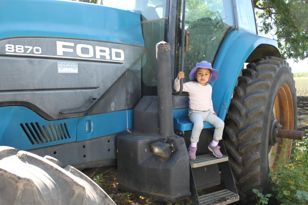 My daughter was thrilled that she got to sit on the various tractors